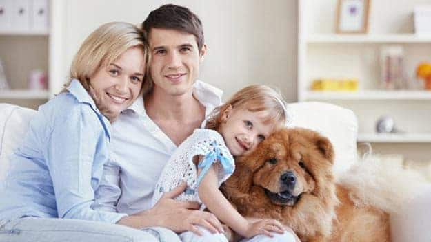Wills & Trusts dog-young-family Direct Wills Hedge End